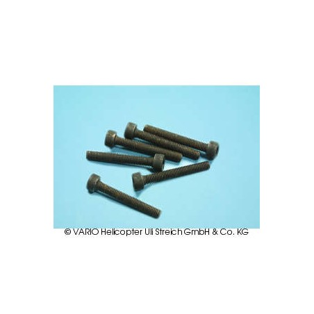 Socket-head cap screw M 3 x 22